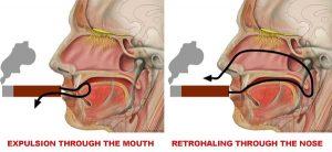 Cách hút retrohale là đẩy một chút khói xì gà qua mũi thay vì hít vào phổi