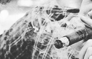 làm gì khi xì gà có mùi bất thường