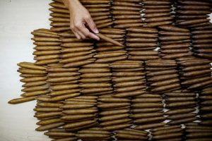 Những điếu xì gà Cuba đã qua kiểm định chất lượng sẽ được đóng hộp chuyển đi khắp thế giới